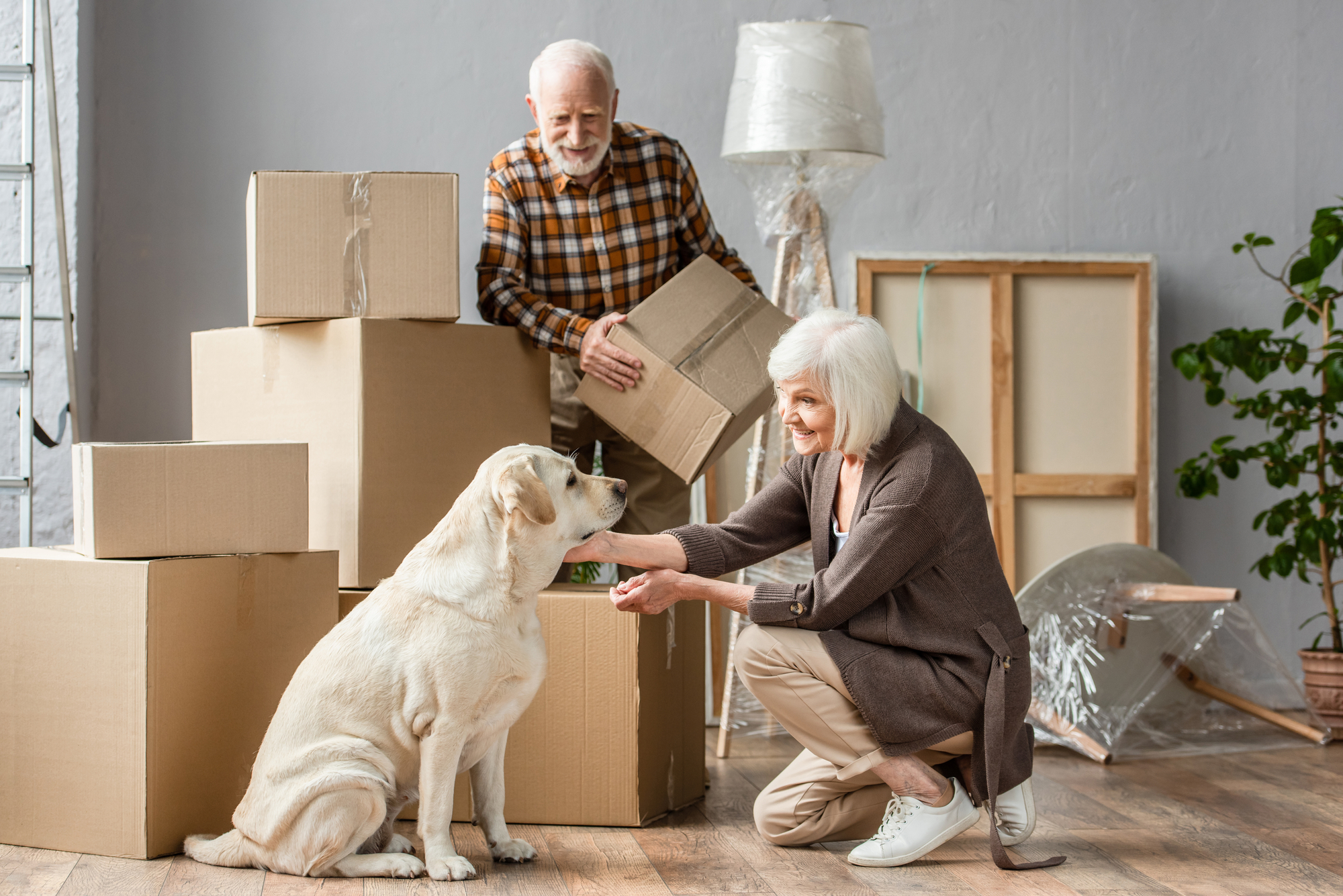 couple with dog and moving boxes