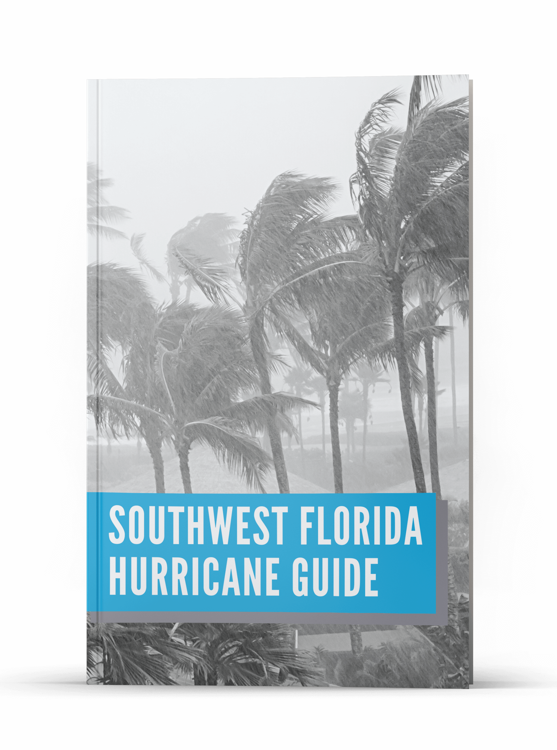 Sonja Pound | Hurricane Prep Guide | Realtor